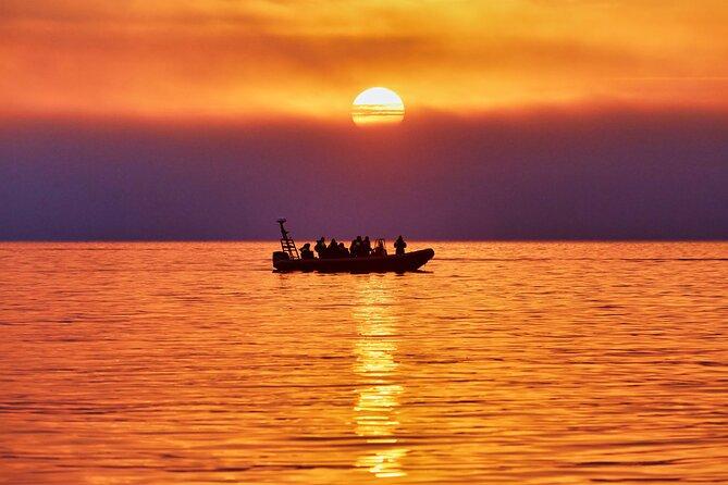 Midnight-sun safari by RIB-boat 22:00