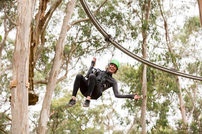 Shockwave Zip Coaster Experience in Lorne