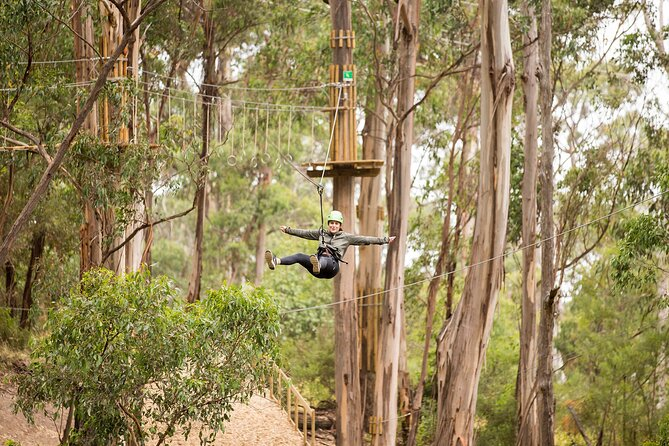 Super Circuit Ropes Course Adventure in Lorne