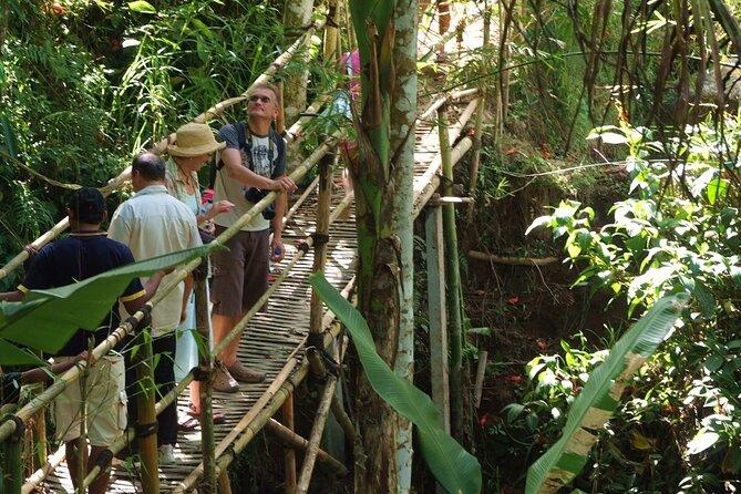 Un paseo ecológico por el Bali verde