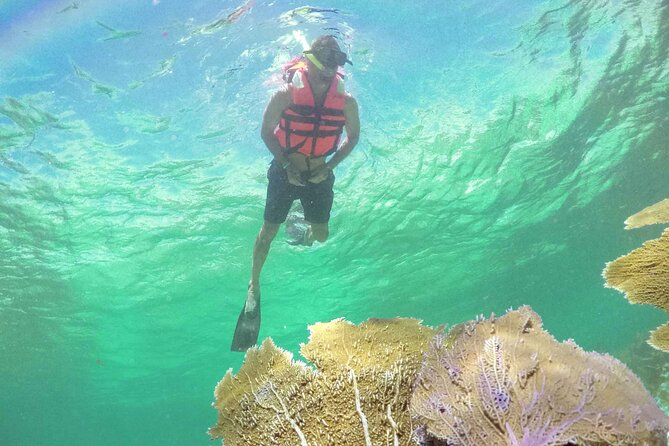 Maroma Beach Reef Adventure with Catamaran Ride