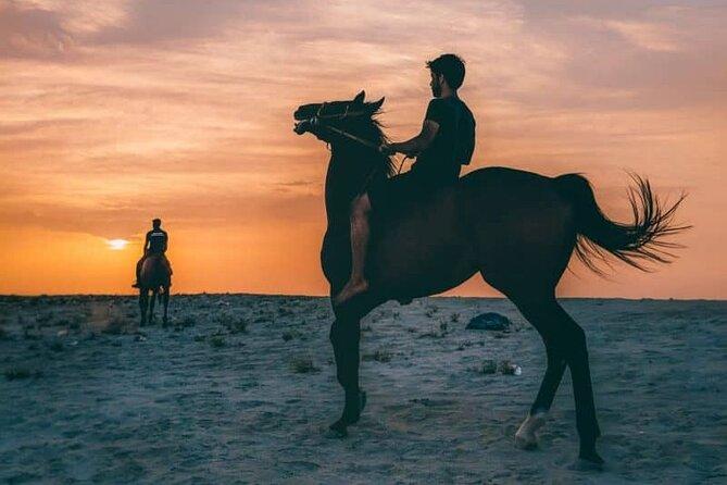 Horse Ride at Nurana Beach Bahrain