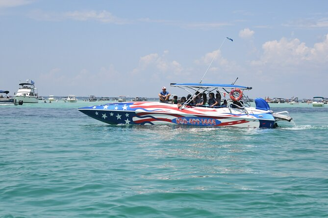 1-Hour Private Dolphin Cruise in Florida