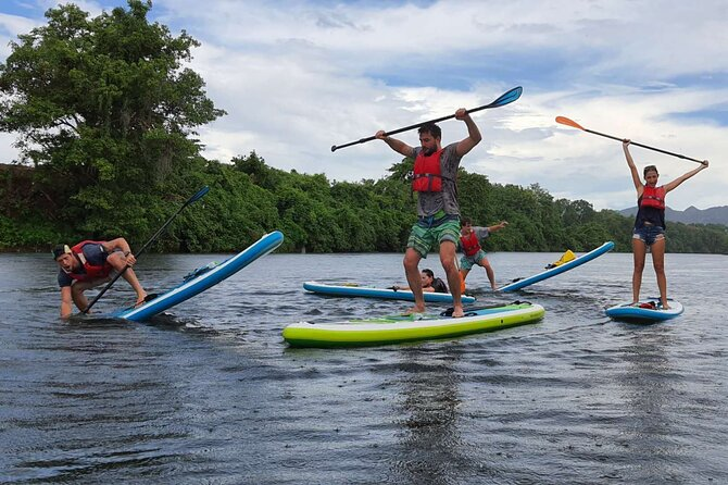 Private 2 hour afternoon SUP class for all ages and levels