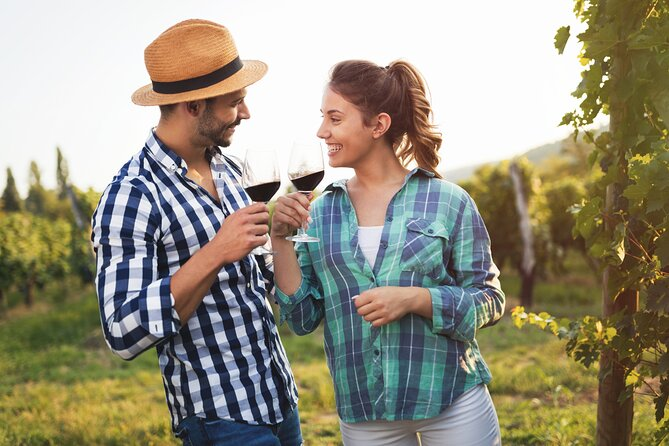 Small-Group Wine Tasting Experience in The Chianti Countryside