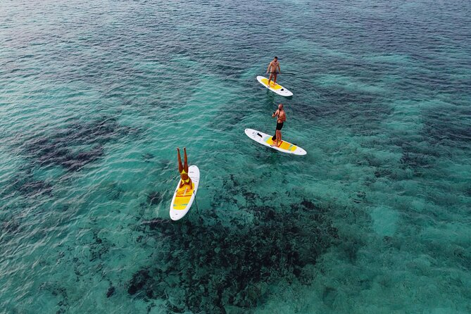 Paddle board at sunrise and photos with drone