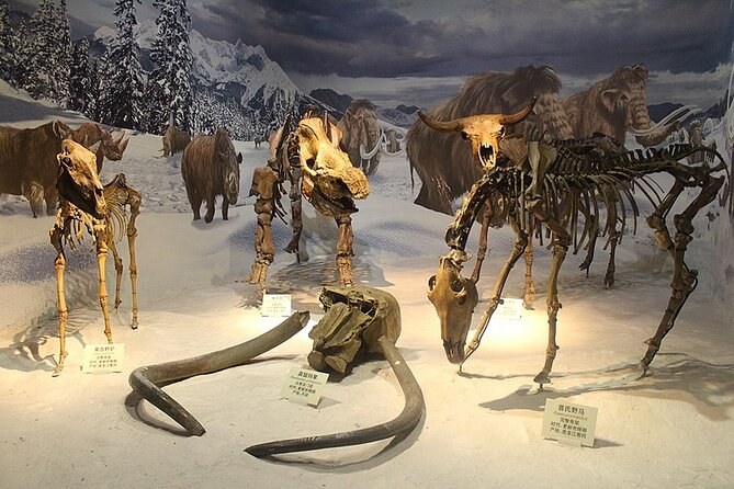 Great Northern PA Ice Age Journey (full day, your group of 1-13)