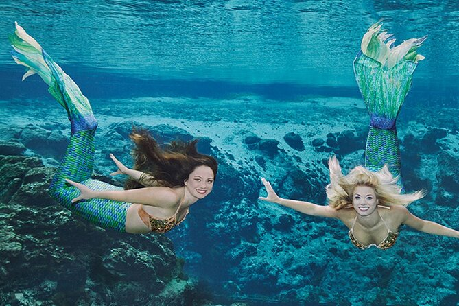 Weekie Wachee, Tarpon Sponge Docks and Homosassa Springs Day Trip