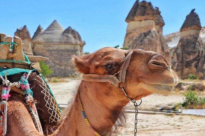 Cappadocia Delight : 2 Days Trip Including Camel Safari, and Balloon Ride Option