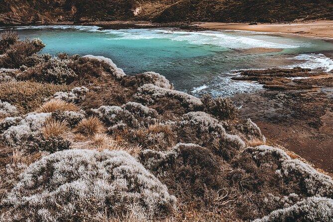 Private Mornington Peninsula Hike and Hot Springs Tour