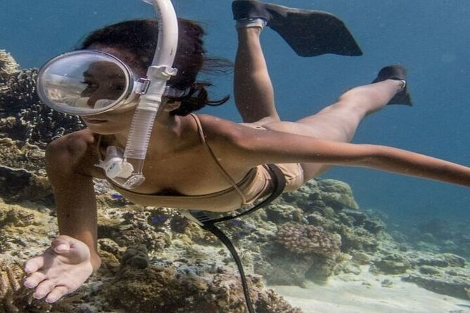 Private Snorkeling Experience at Mahmya Island from Hurghada