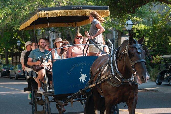 Historic Carriage Tour of Charleston
