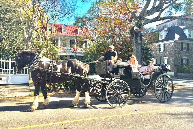 Private Historic Carriage Tour of Charleston