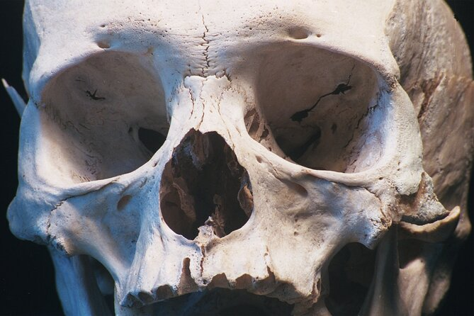 Bloody Bones Escape Game in Key West