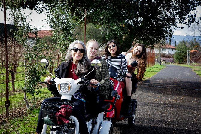 4 hr Private Wine Country Tour in Sonoma on an Electric-Trike