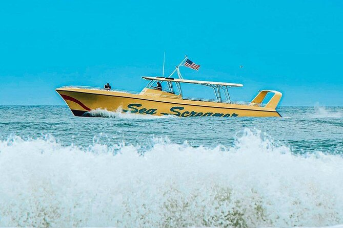 Clearwater Beach Speedboat Adventure with Lunch & Transport From Orlando