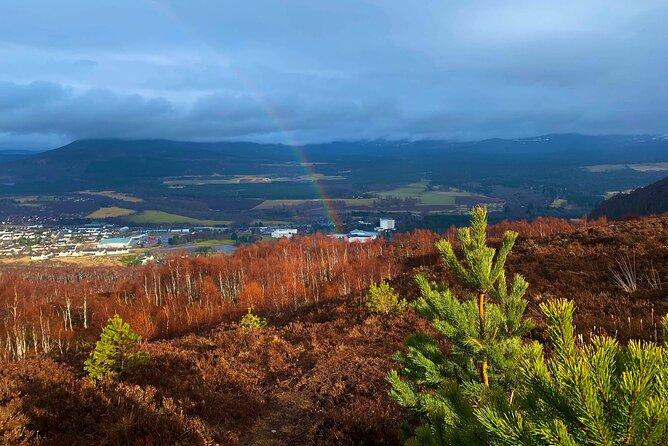 Private Cairngorm National Park tour