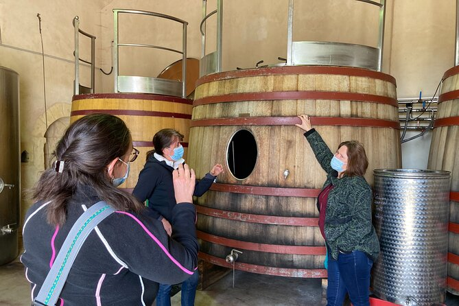 Saint-Emilion Small Group Morning Tour with Winery Visit and Tasting