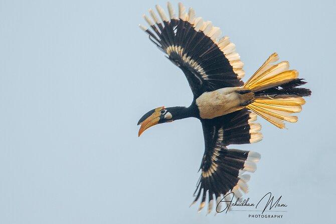 Private 3-Day Dandeli Birding Tour from Hubli