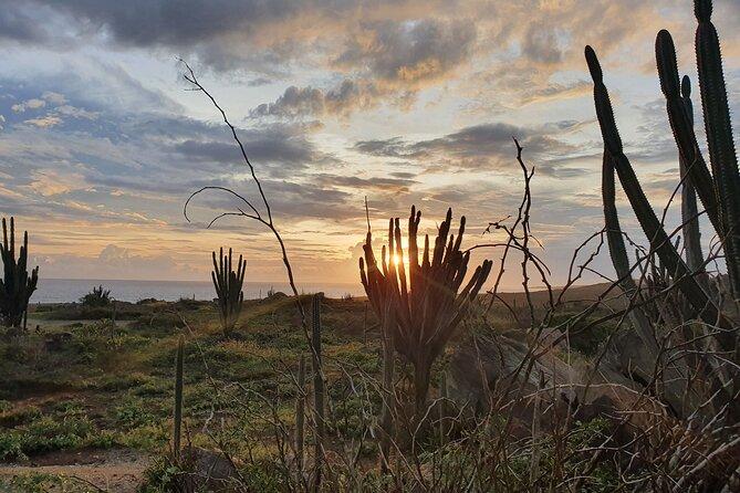 Noord Aruba Sunrise Hike and Beach Meditation with Breakfast