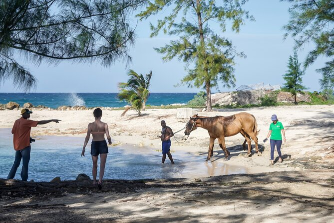 Beach Horseback Riding with Dunn's River Falls Ocho Rios