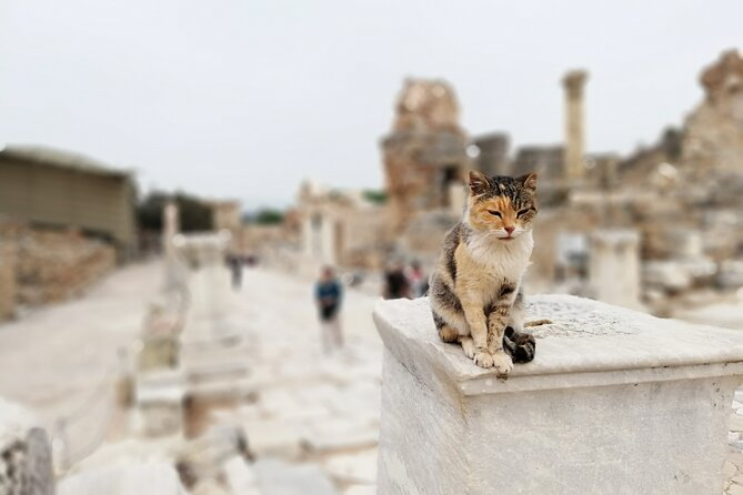 2-Day Small-Group Tour Highlights of Ephesus from Izmir