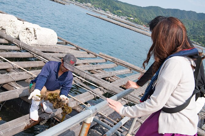 Learn from Oyster Farmers & Enjoy the Charm of Hiroshima Oysters