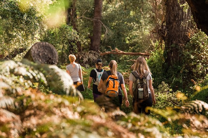 Half-Day Yanchep Ghost House Wilderness Guided Hike Tour