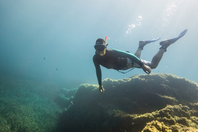 Snorkeling Experience in Genoa for Small Groups