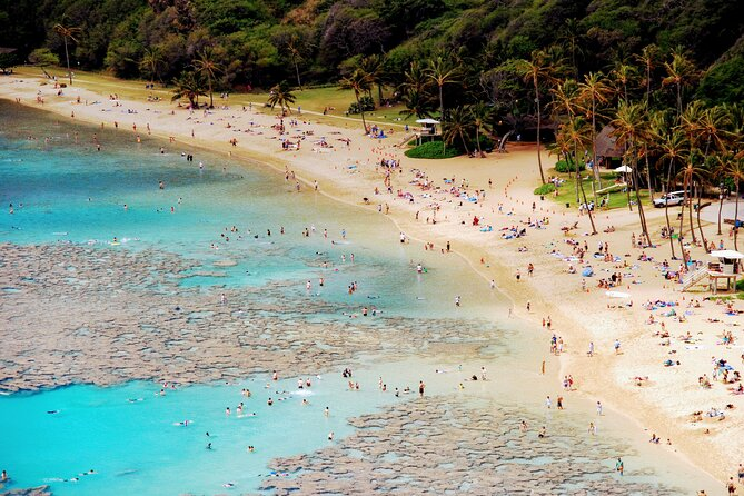 Private Rainforest and Luquillo Beach Tour from San Juan