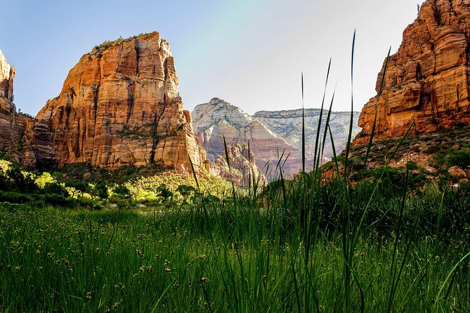 Zion Canyon Scenic Drive (Available In 2022)