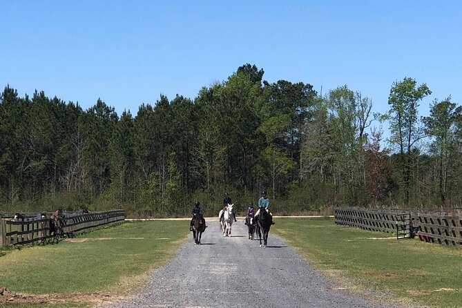 Small-Group Poplar Grove Plantation Horseback Ride in Ravenel