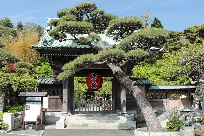 Excursão pelos destaques de Kamakura com cerimônia do chá e Enoshima Bay Drive, saindo de Tóquio