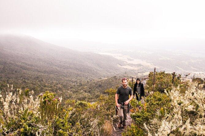 Vandets Bjerg: Chingaza National Park