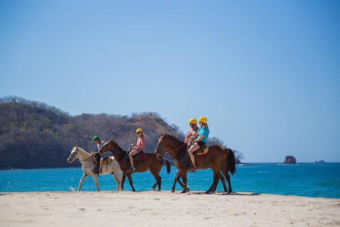 Horseback Riding Tours Jobo