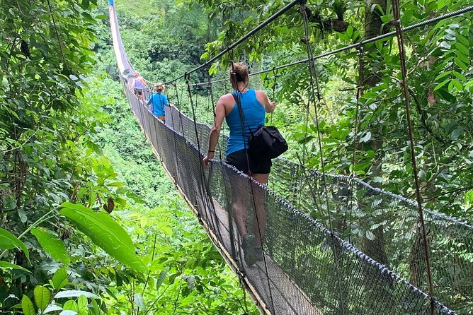 Private Rainforest Hike, Hanging Bridges, and cultural lunch.