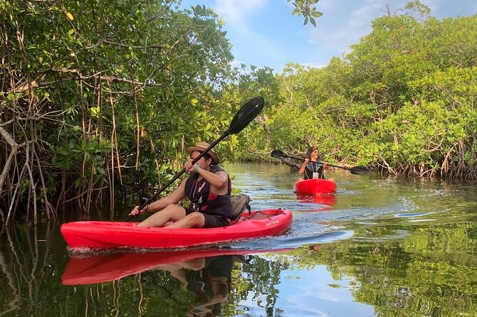 Guided Kayak Experience in Cancun