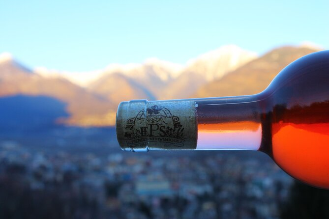 Food and Wine Tasting in the Ossola Valley