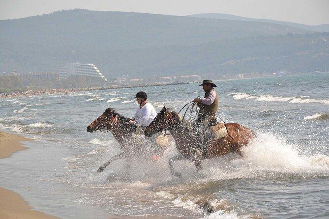 Adventure Horse Safari From Kusadasi / Selcuk Hotels