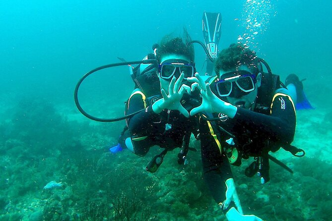 Scuba Diving for Beginners in Pula
