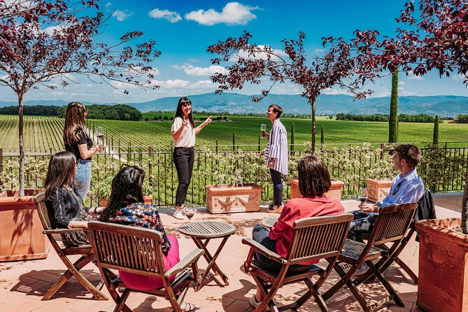 Montepulciano area: Exclusive Winery Tour & Tasting Experience
