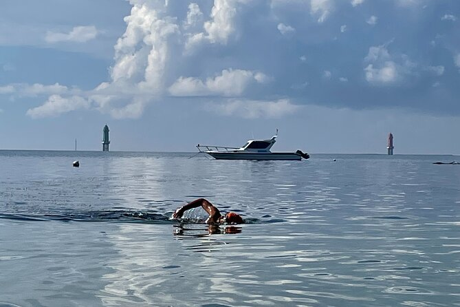 Total Immersion (TI) swimming lesson