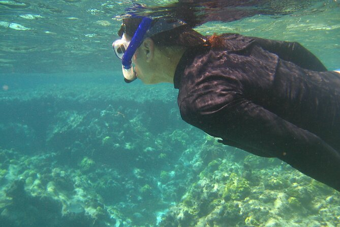 Snorkeling Tour in San Andres