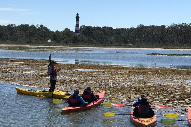 Kayak Tour around Chincoteague and Assateague Islands