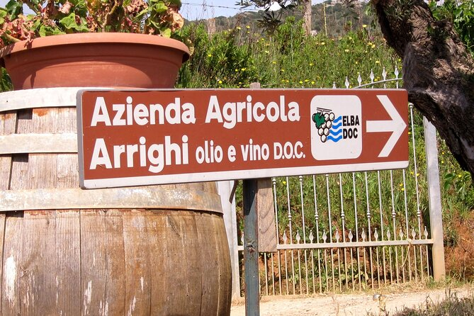 Guided Cycle Tourism Wine Tour by E-Bike on the Island of Elba
