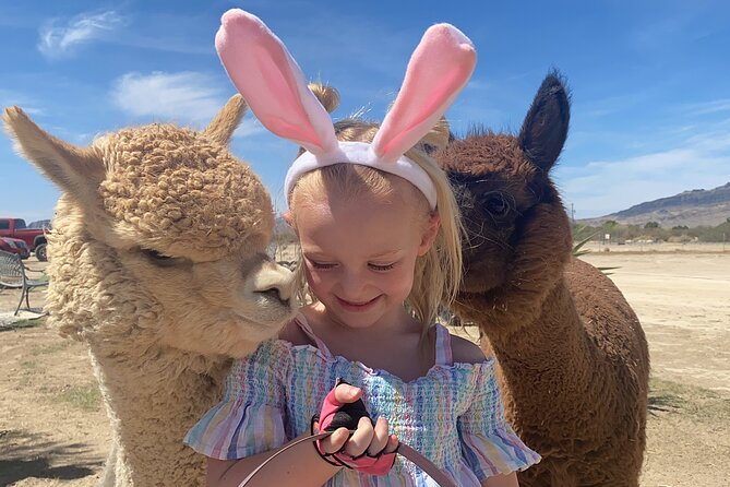 Tickets to Nature Health Farms Petting Zoo, Antique Store & Hemp Farm in Pahrump