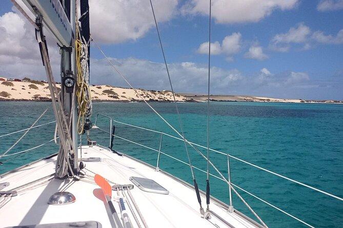 3-Hour Small-Group Sailing Tour around the Lobos Island