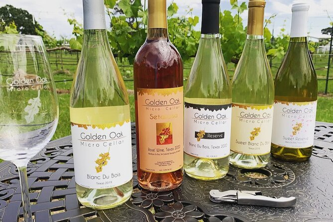 Wine Tasting Experience in New Waverly