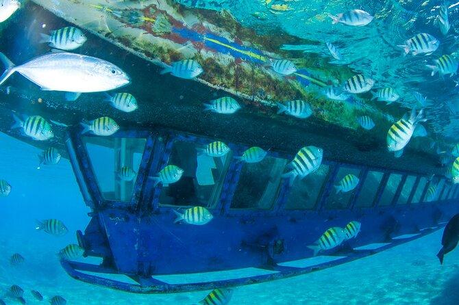 Glass Bottom Boat in Cancun
