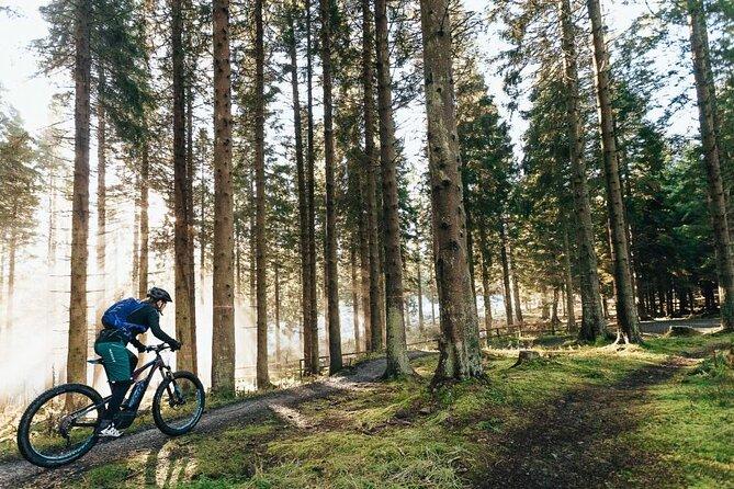 Guided E-Bike Day Trips Dorset